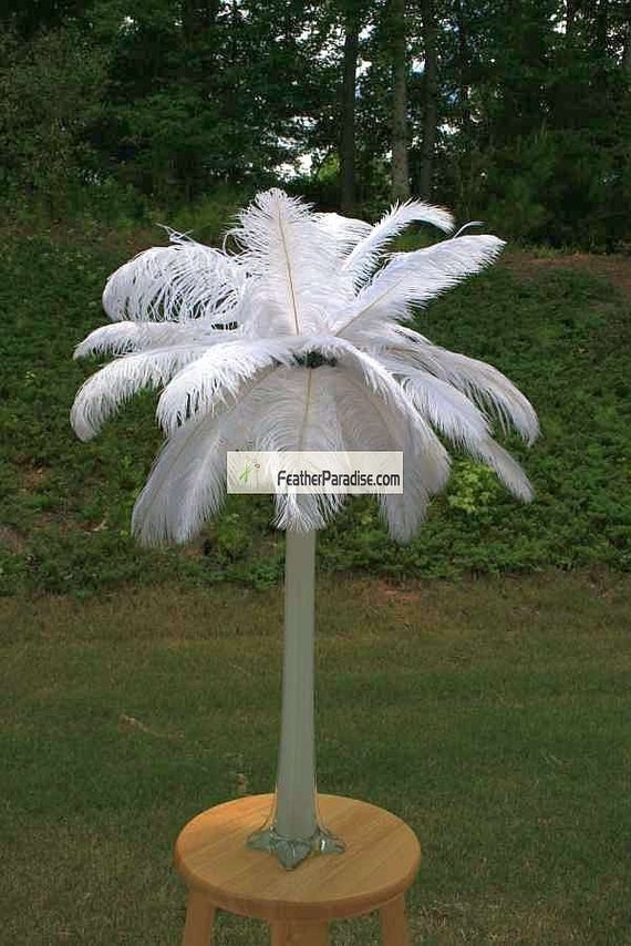 Mint green white black red ostrich feathers feather