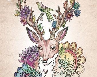 "coloring book ""Pretty creatures coloring"""