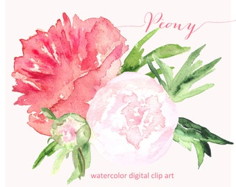 Peony. Watercolor clip art, SALES! hand drawn. peony bouquet. Peony wedding, bridal pink flowers invitations, logo, Peony clip art.