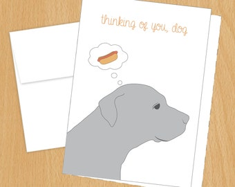 Thinking of You, Dog - Funny Cards - Just Because