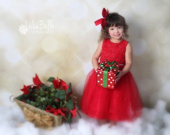 Photography Backdrop - All That Glitters Backdrop, Gold Backdrop, Bokeh Backdrop, Christmas Backdrop, Holiday Backdrop - Fab Drop (FD0001)