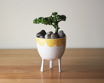 Large Scalloped-Edge Planter in Yellow