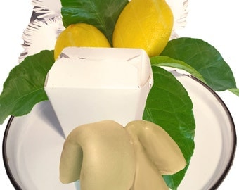 Lemon & Rosemary All Natural Solid Shampoo and Conditioner Fortune Cookies