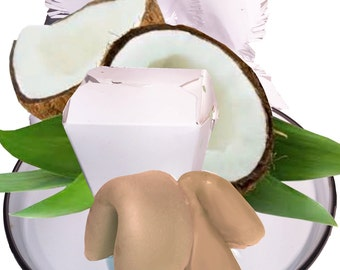 Coconut & Lemongrass All Natural Solid Shampoo and Conditioner Fortune Cookies