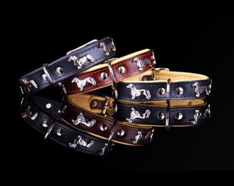 Genuine Leather Dachshund collar