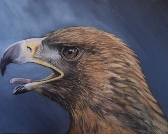 Golden Eagle - Limited Edition Mounted A3 print of a beautiful Golden Eagle