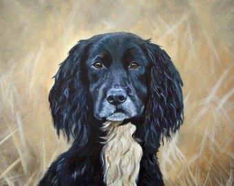 Spaniel - Limited Edition Mounted A3 print of a beautiful spaniel in the rough