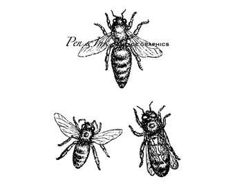 Honey Bees Digital Vintage Graphic