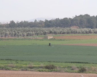 A digital photography of a village view in the way to Jerusalem.