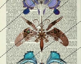 """POSTERS... POSTER art print """"STEAMPUNK Butterfly"""" table 20 x 29 cm"""
