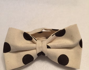 Brown Dots on Creme Pre-tied Bow Tie