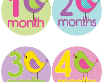 Month Onesie Stickers - Baby Milestone Stickers (405)