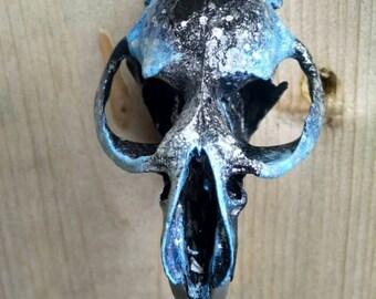 Twilight painted muskrat skull
