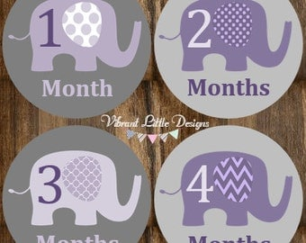 Month to Month Stickers Girl, Milestone Stickers, Month Stickers, Baby Month Stickers, Baby Stickers, Purple Elephant #133
