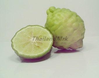 Thai Kaffir Makrut 10 Seeds ThailandMrk