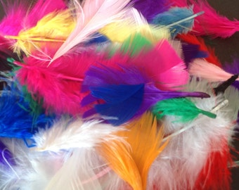 5g of Beautiful Brightly Coloured Feathers in Assorted Sizes