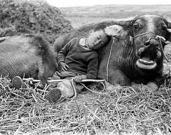 Gangfeng Wang - Boy with cow (1987)