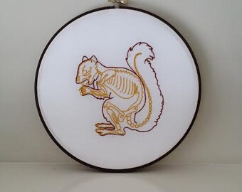 Skeleton Squirrel