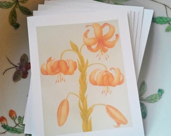 Lily Fine Art Cards, 4 1/4 x 5 1/2, Set of 8, Printed from my Original Painting