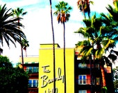 The Beverly Hills Hotel, California Palm Trees Daylight Saturated Yellow Green Blue Fine Art Photograph Print Photography