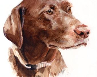 8x10 Custom Pet Portrait Illustration