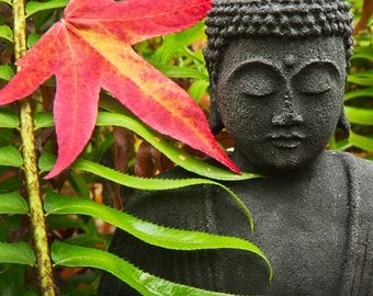"""5"""" X 7""""  Buddha with Red Maple Photo Card (Blank inside)"""