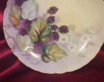 Grape Vine Hand painted Signed Bavarian R C Tilly Plate