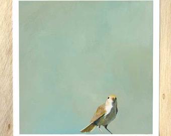 A Series Of Simple Trills And Whistles...12 x 12 Art Print Bird - Bird - Animal - Nature - Gift - Mincing Mockingbird