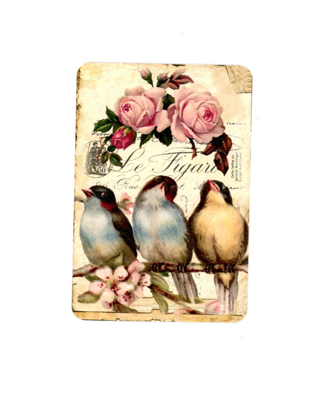 Bird ecards