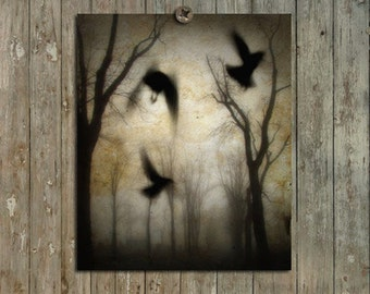 Gothic Trees Photograph, Flying Crows, Forest, Woods, Ethereal, Surreal Art-Photo, Goth Nature Print - Woodland Dusk