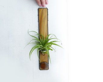 Stained Glass Air Plant Holder - Café au lait