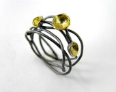 Twig branch oxidized sterling silver ring with gold plated seed pods.