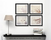Save 20%, Winter Nature Photography Print Set, Natural Soft Minimal Modern, Minimalist Decor, Neutral White and Gray, Photo Collection
