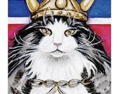 Cat T-Shirt, long sleeved, Viking Cat, Norwegian Forest Cat Viking Wegie  Viking helmet red white blue flag