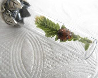 Spiritual Real Ladybug, Frosted Fern Terrarium Reliquary Pendant-Gifts Under 35-Symbol of Renewel, Promise, Joy, Perseverance-Nature's Art