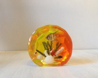 Resin paper weight with real fish and shells, orange yellow