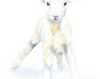Lamb Watercolor Painting Note Cards Set of 6 - Sheep Baby White Lamb Animal Cards - 5.5x4.25