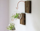 Wood and Copper Wall Mount // Unique Wall Decor // Handmade Terrarium Holder, tillandsia, home decor, plant holder, living home decor, gift
