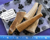 4 Piece X-Small Caribou and Mule Deer Antler Dog Chews, A4pxscm-56