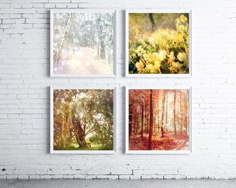Life Everlasting - FOUR PHOTO SET,  four seasons art, tree photography, gift ideas, photography set, surreal landscape, woodland, nature