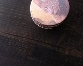 Cat Coasters (Set of 6)