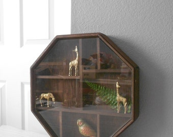 large octagon wood shadow box with glass cover / curio display box / geometric