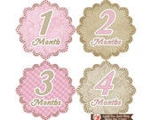 Baby Monthly Stickers FREE Baby Month Milestone Sticker Baby Month Stickers Baby Girl Bodysuit Stickers Vintage Shabby Chic Pink Brown 001G