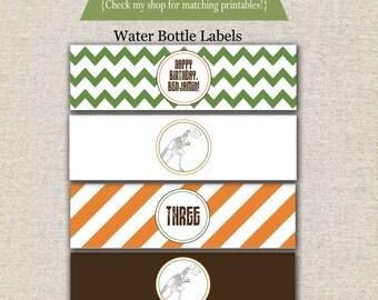 Dinosaur Water Bottle Labels - orange green brown | Dinosaur Water Bottle Wrappers | Dinosaur Water Bottle Labels | Dinosaur Drink Labels
