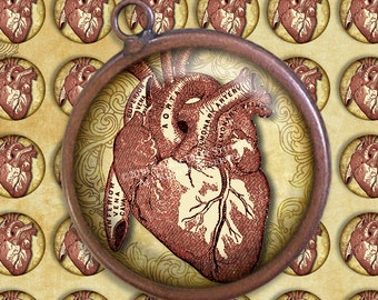 Steampunk Goth Victorian Anatomy - Antique Medical Illustration - Red Hearts - 25mm Circles - Digital Collage, Printables, Instant Download