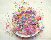 Confetti Recycled Paper Scraps Birthday Wedding Confetti Funfetti