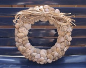 "Beach wreath - 8.5 "" - seashell wreath - shell wreath - coastal decor - nautical - spring wreath"