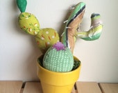 Cotton Cacti in a Yellow Pot