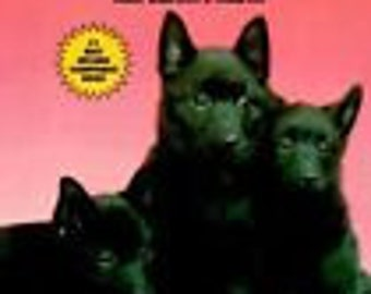 Schipperkes How To Raise Them Vintage New How To Book
