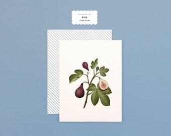 Botanical Scented Card - Fig